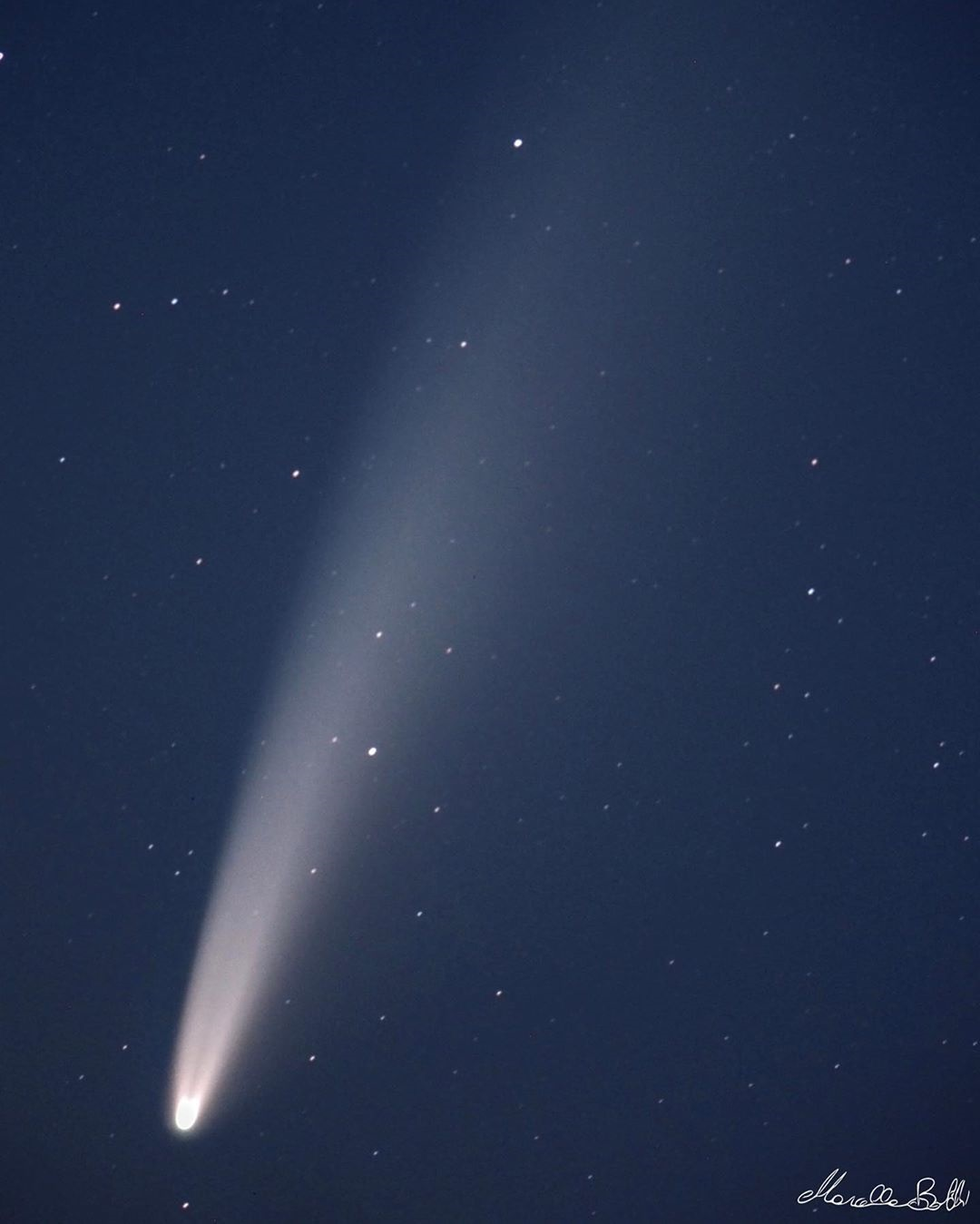 Comet NEOWISE in the Northern Skies!
